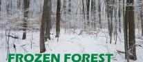 Frozen Forest first crop E